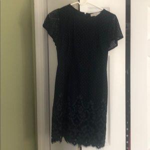 Ann Taylor Loft lace dress. Never worn.
